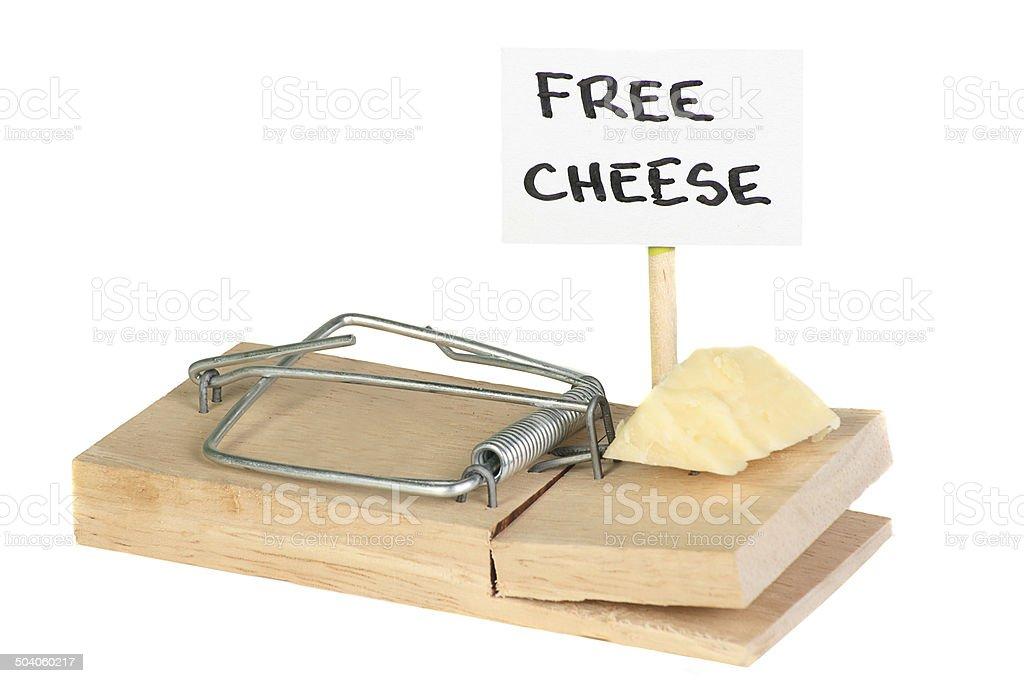 free cheese stock photo