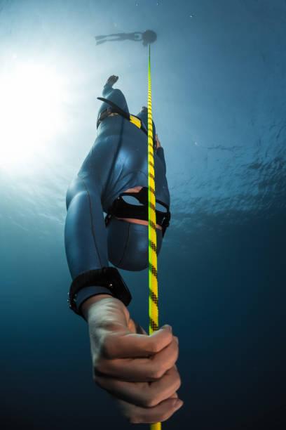 free diver descending along the rope - freitauchen stock-fotos und bilder