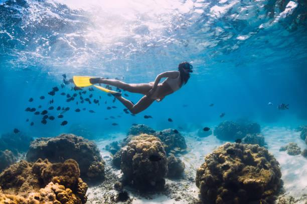 Kostenlose Taucher Mädchen gleitet mit Schule von Fischen in blauen Ozean – Foto