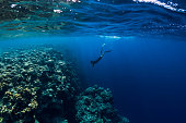 Free diver man dive in ocean, underwater view with rocks and corals
