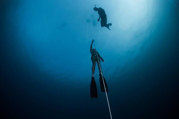kostenlose diver - freitauchen stock-fotos und bilder