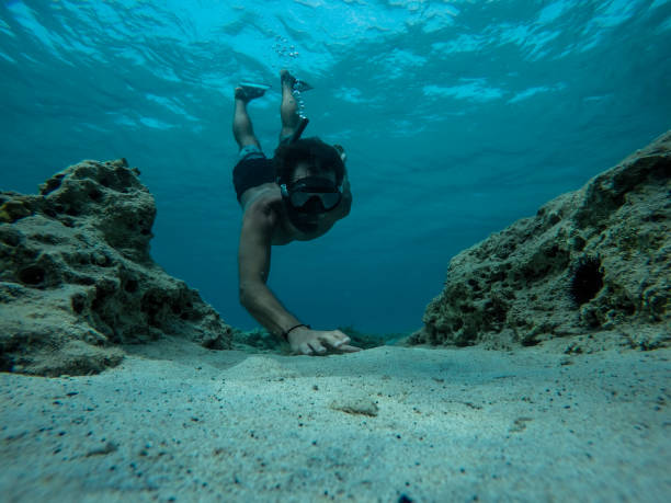 Free diver reaching for sea shells at the bottom of the sea stock photo