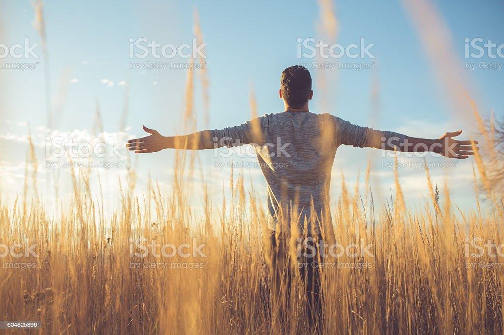 Free man stock photo