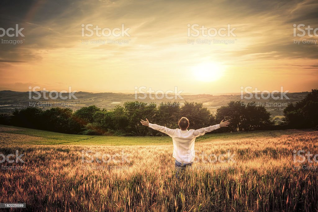 Free Man with Open Arms in Wheat Field at Sunset stock photo