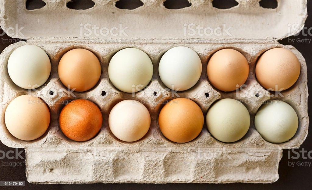 Free Range Chicken Eggs stock photo