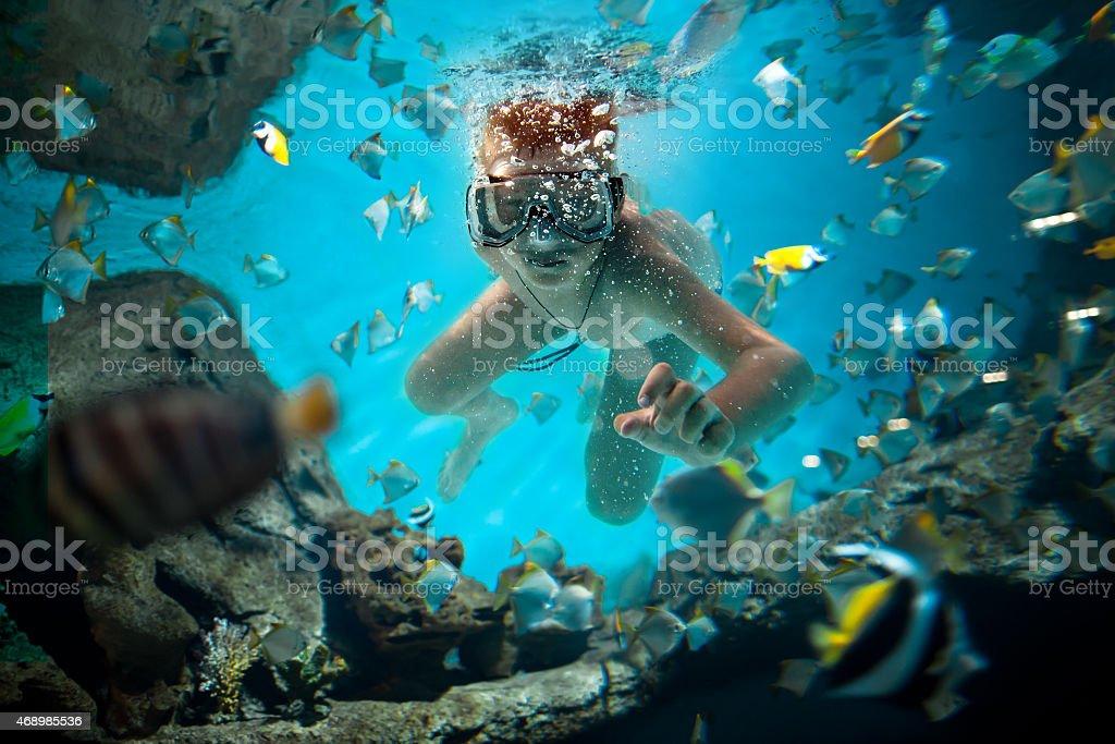 freedive stock photo