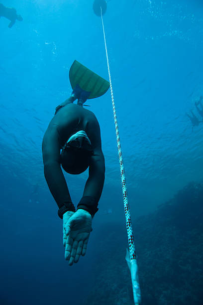 Freediver descending to the deep stock photo
