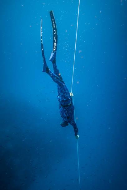 freediver tauchen und folgenden the life line jederzeit in der tiefen blauen san andres island, kolumbien. - freitauchen stock-fotos und bilder
