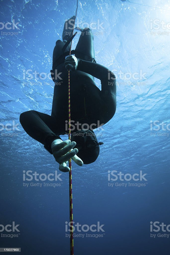 Freediver diving in the ocean More freediving shots: Athlete Stock Photo
