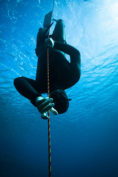 Freediver diving in the ocean stock photo