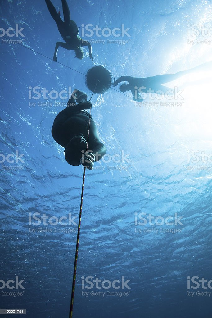 Freediver diving in the ocean - Royalty-free Athlete Stock Photo