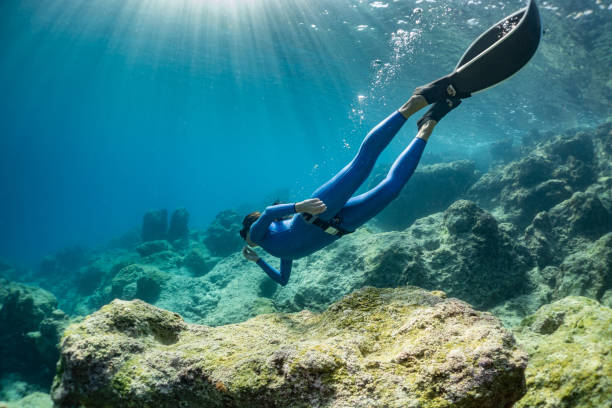 freediver girl in the sea. freediver girl in the sea. free diving stock pictures, royalty-free photos & images
