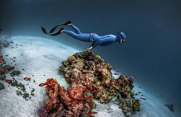 freediver gliding underwater - freitauchen stock-fotos und bilder