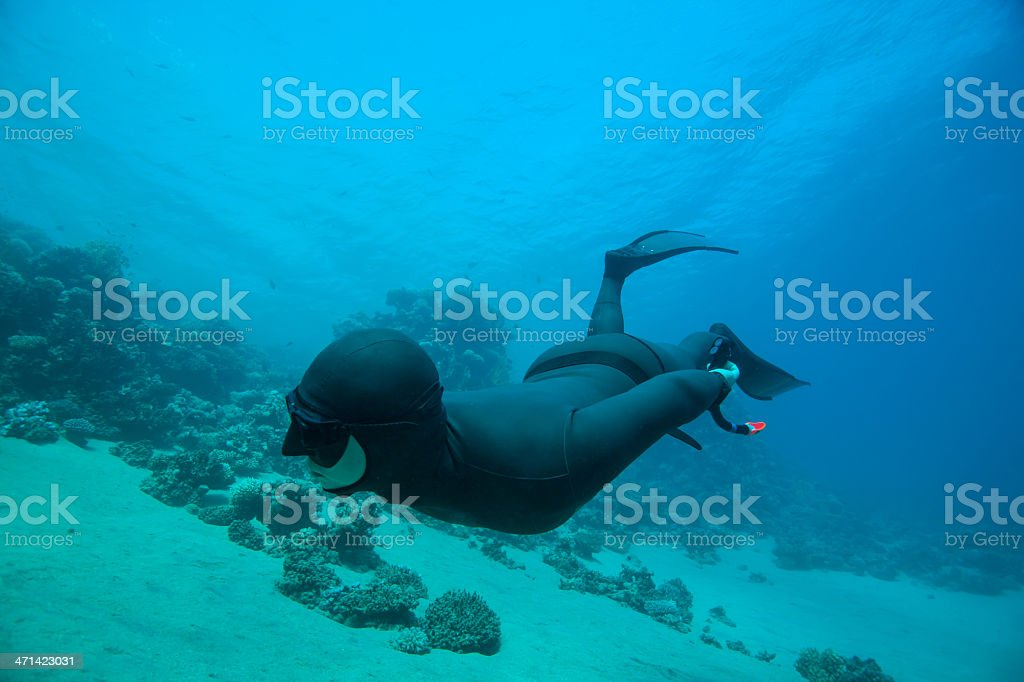 Freediver swimming underwater along the coral reef stock photo