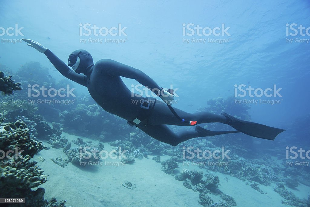 Freediver swimming underwater stock photo