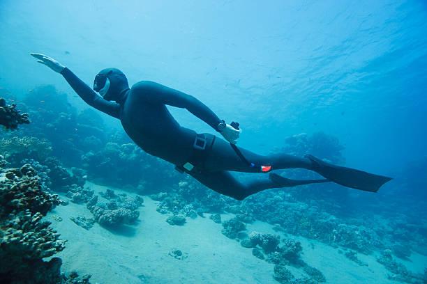 Freediver swimming underwater stock photo