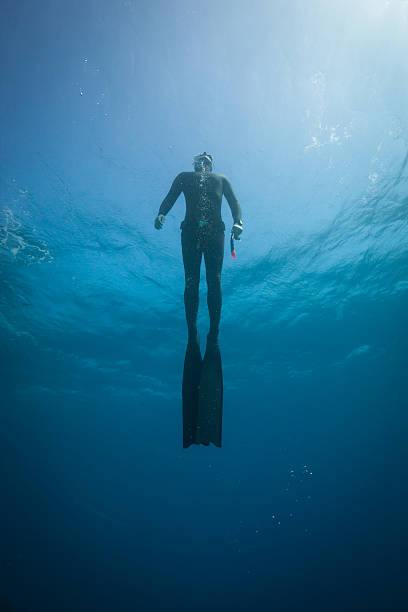 Freediver training in the ocean stock photo