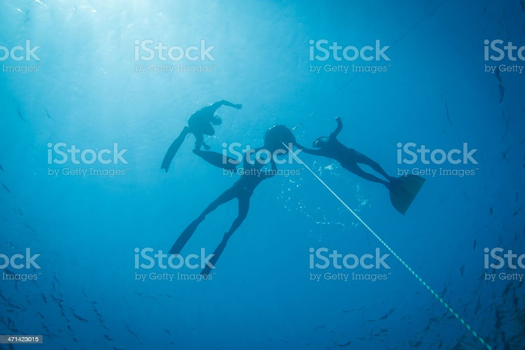 Freedivers preparing to descent into the deep stock photo