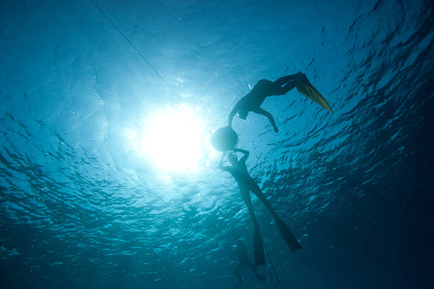 Freedivers preparing to descent stock photo