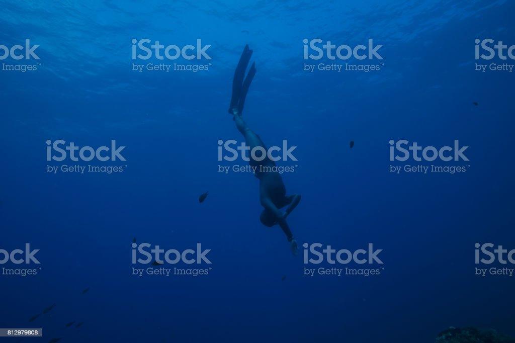 Freediving Apnea Women Snorkeling Underwater Diving Sea Adventure