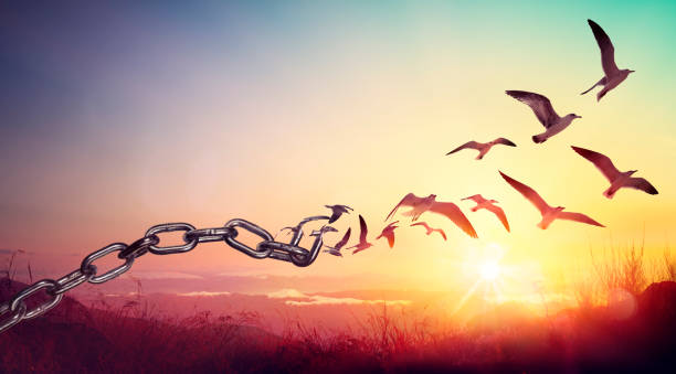 Freedom - Chains That Transform Into Birds - Charge Concept stock photo
