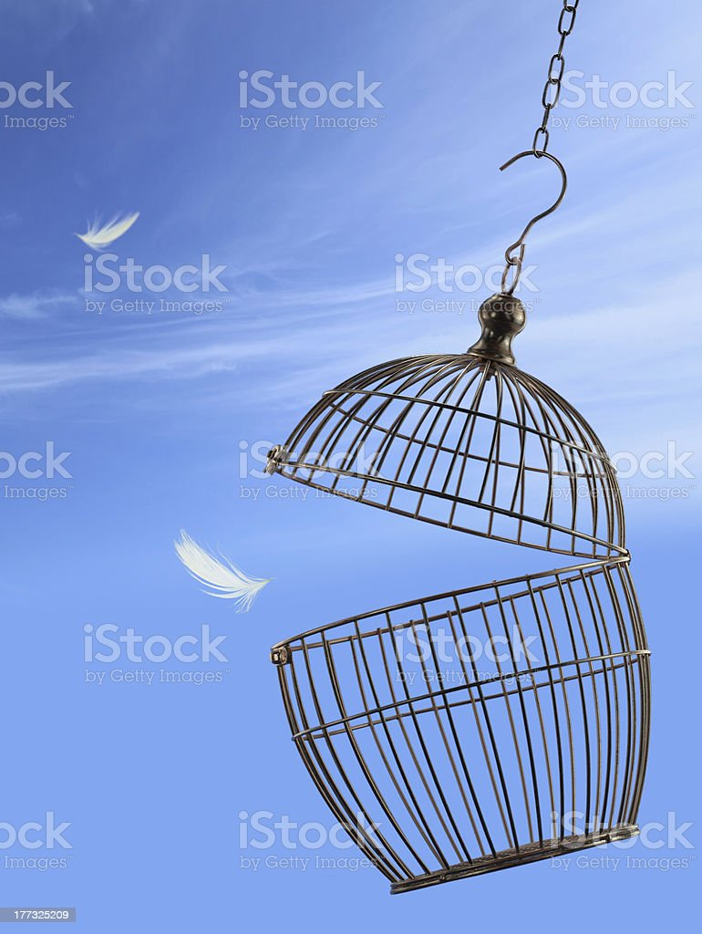 Freedom concept royalty-free stock photo