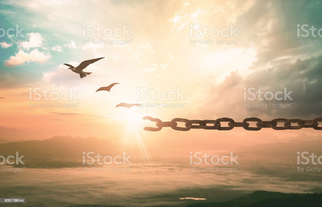 Freedom concept stock photo