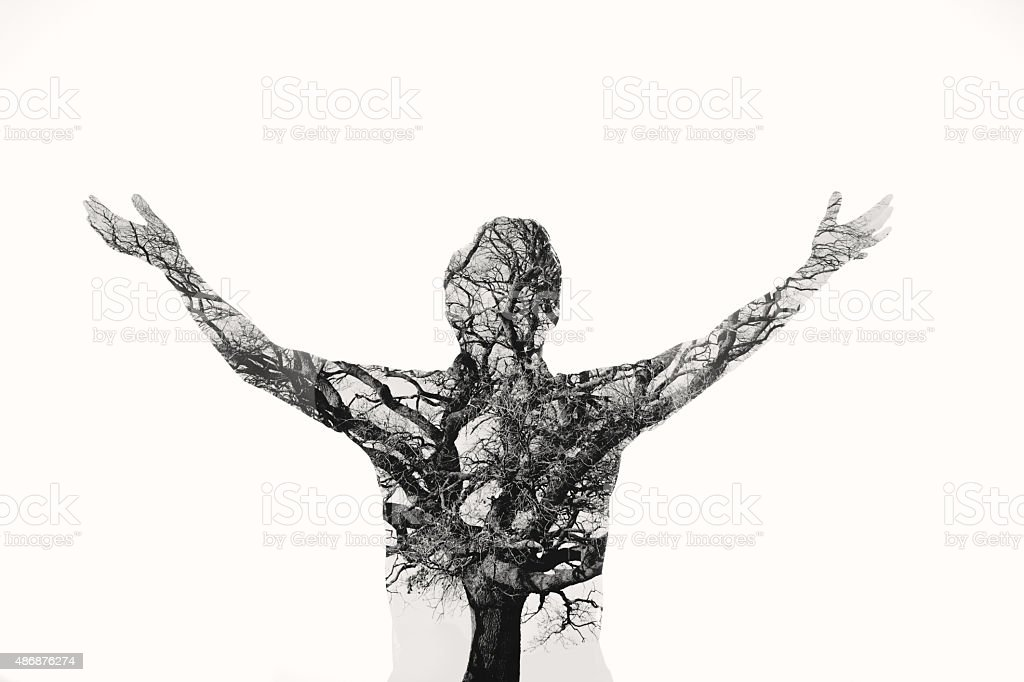 Freedom - Double exposure man with tree in the portrait stock photo