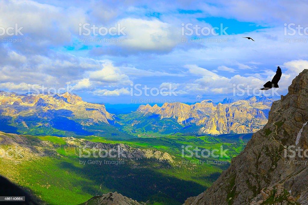Freedom: Eagles Flying over Dolomites, Sudtirol at sunrise stock photo