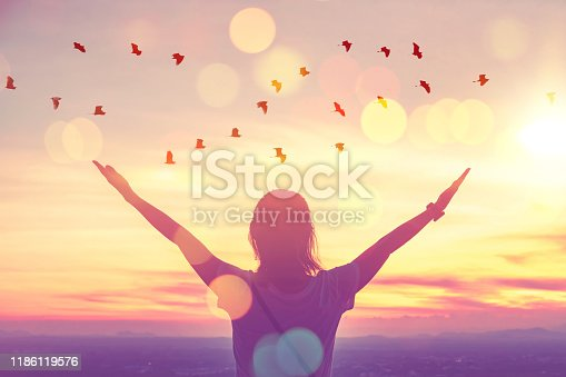 Freedom feel good and travel adventure concept. Copy space of silhouette woman rising hands on sunset sky at top of mountain and bird fly abstract background. Vintage tone filter effect color style.