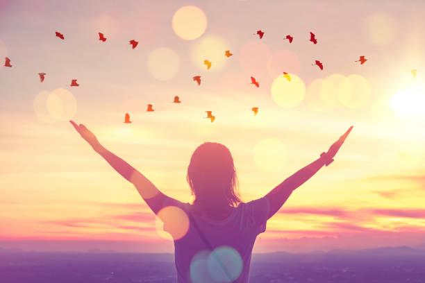 wolność czuć się dobrze i koncepcji przygody podróży. kopiuj przestrzeń sylwetki kobiety wznoszącej się na zachód słońca na szczycie góry i ptaka latać abstrakcyjne tło. - nadzieja zdjęcia i obrazy z banku zdjęć