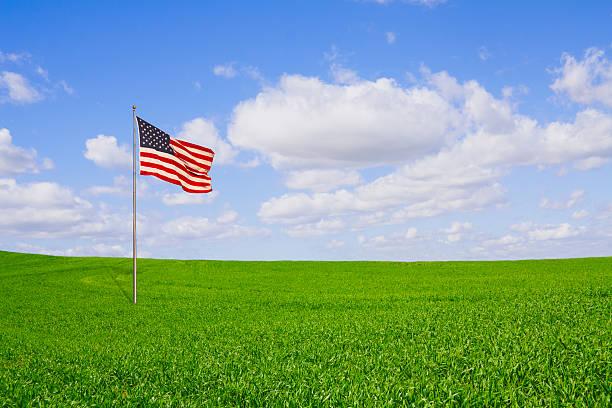 Freedom Field stock photo