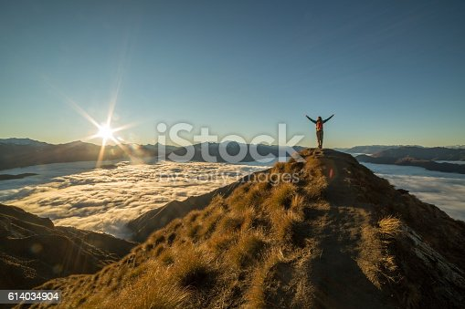 istock Freedom in nature 614034904