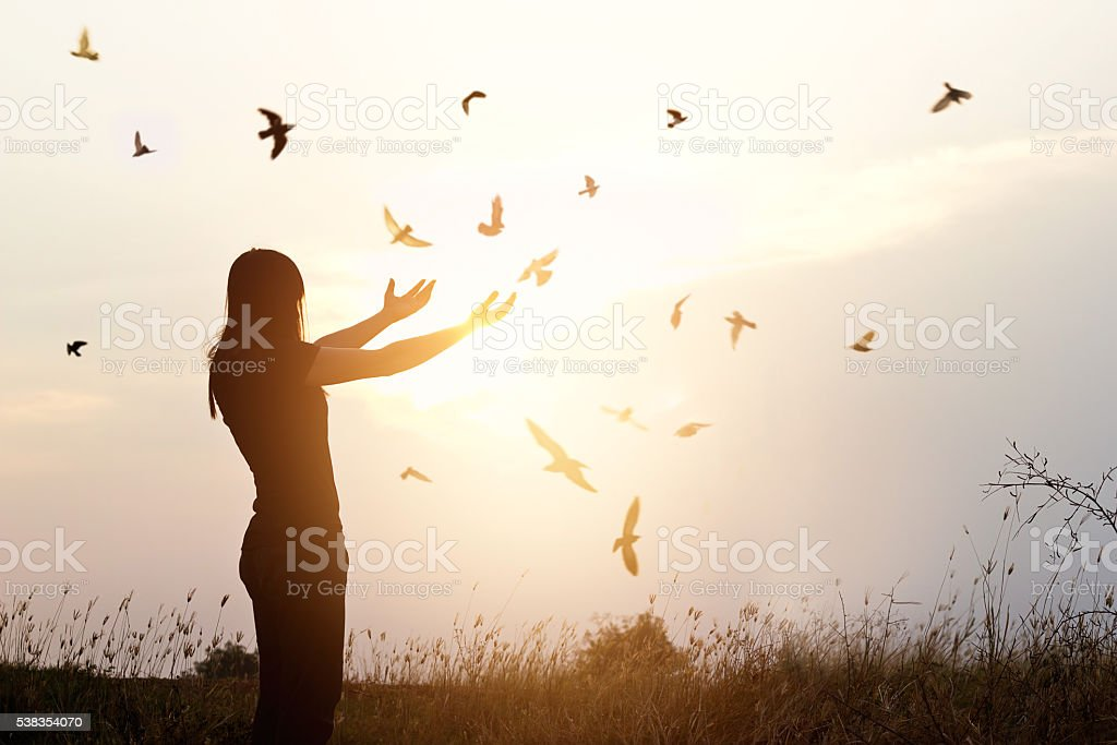 Freedom of life, free bird and woman enjoying nature stock photo