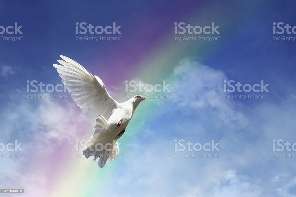 Freedom, peace and spirituality stock photo
