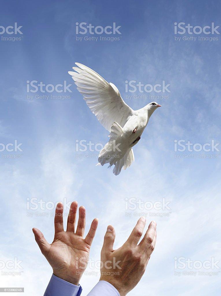 Freedom, peace and spirituality stock photo