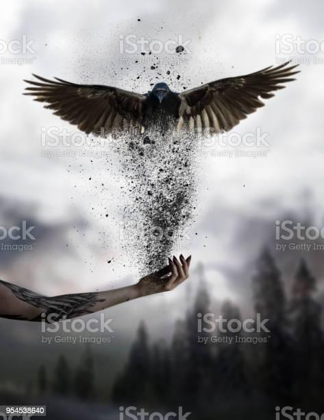 Freedom picture id954538640?b=1&k=6&m=954538640&s=612x612&h=ccxhpwxt1ad6deblanotvl4ttcyh9zouzrbqpvwojwa=