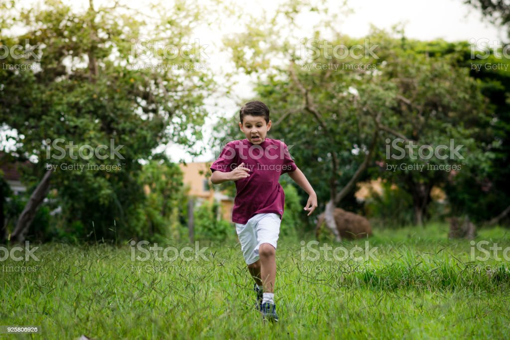 Freedom to play and run stock photo