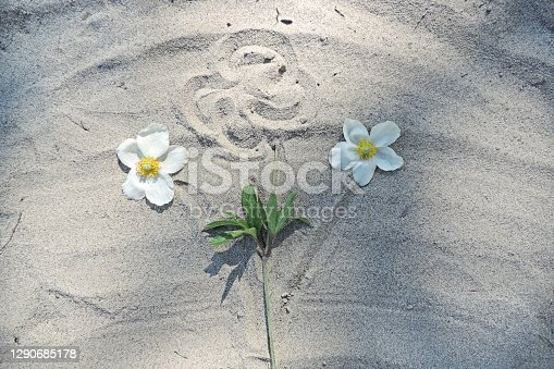 freehand drawing of a bouquet of flowers in the sand and real white flowers
