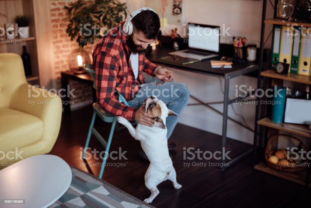 Freelancer working from home and playing with his dog stock photo