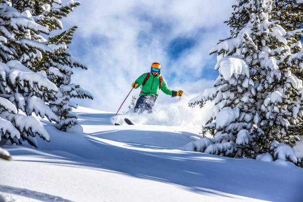 Freeride skier charging down through the forest in fresh powder, Kuhtai, Austria Young male skier skiing in fresh snow through the trees in austrian ski resort powder snow stock pictures, royalty-free photos & images