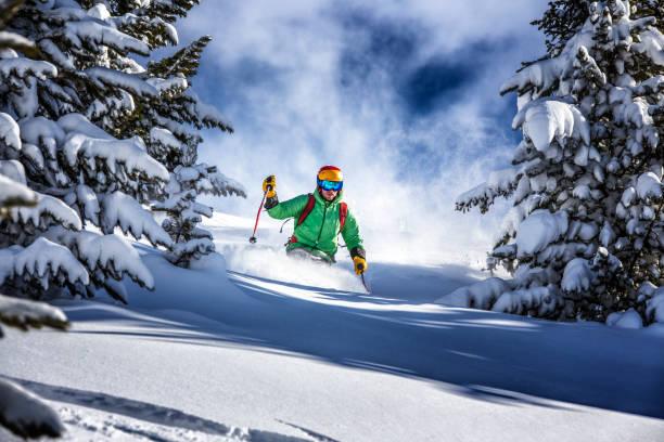 Freeride skier charging down through the forest in fresh powder picture id1050380092?b=1&k=6&m=1050380092&s=612x612&w=0&h=2og5kpljdnssv8dw5qojyspj9nuo8qa 2p9jxq21yto=