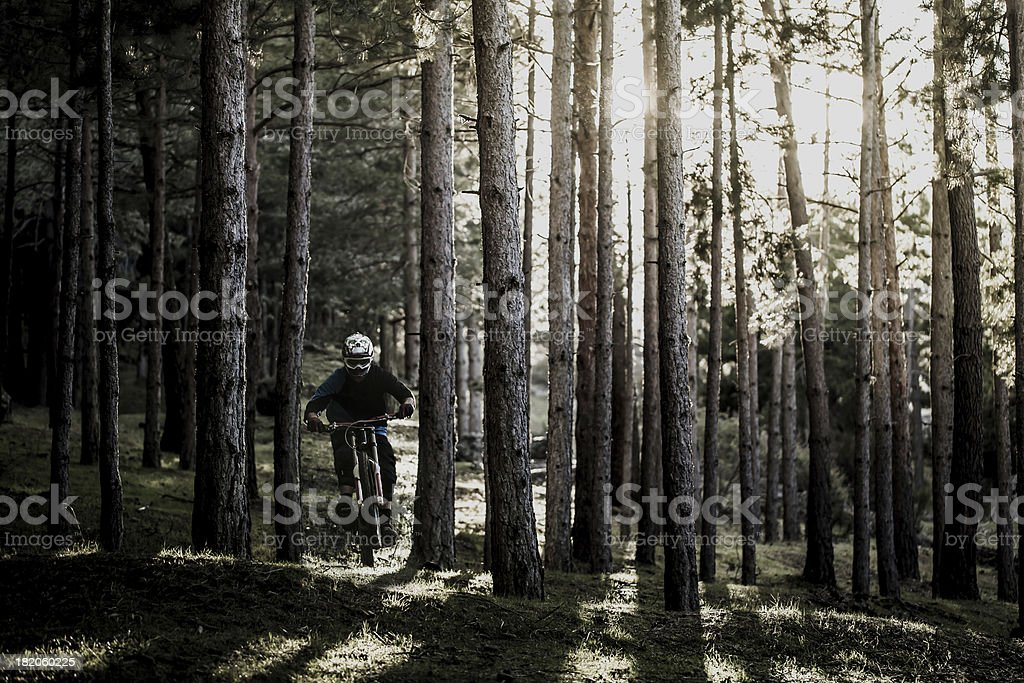 Freerider! royalty-free stock photo
