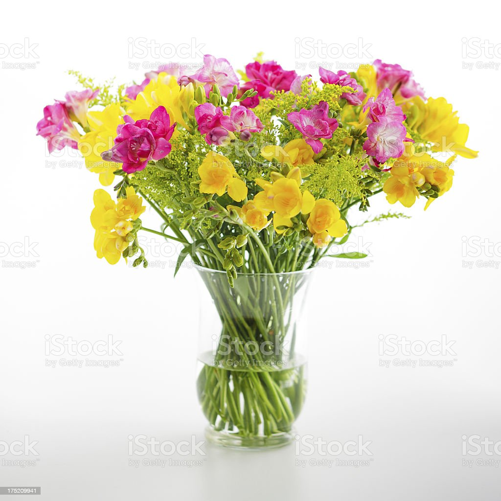 Freesia flowers in a vase royalty-free stock photo