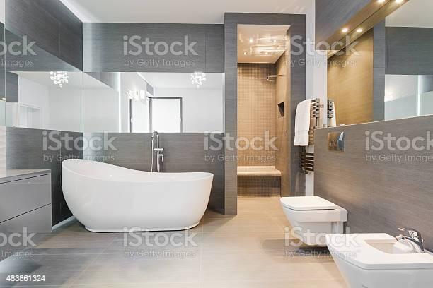 Freestanding bath in modern bathroom picture id483861324?b=1&k=6&m=483861324&s=612x612&h=wxpxptnwtxkgrxtf5acxow4yra7uyrnssdpztigzcrs=