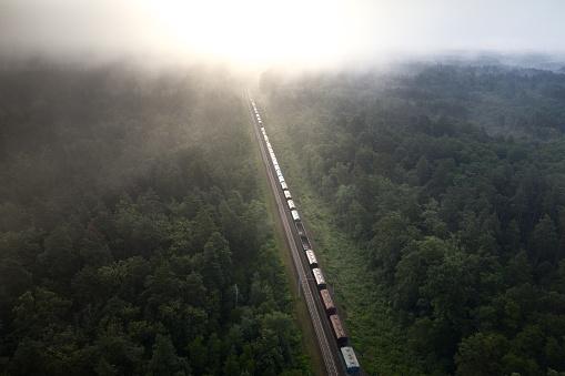 A freight train travels through a foggy forest.