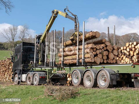 A freight transportation driver sitting at the controls of an external seat on his lorry, using hydraulics to control grapples being used to lift newly harvested timber from the large stack beside the lorry. He is using lever sticks to carefully manoeuvre logs into position for maximum and safe loading.