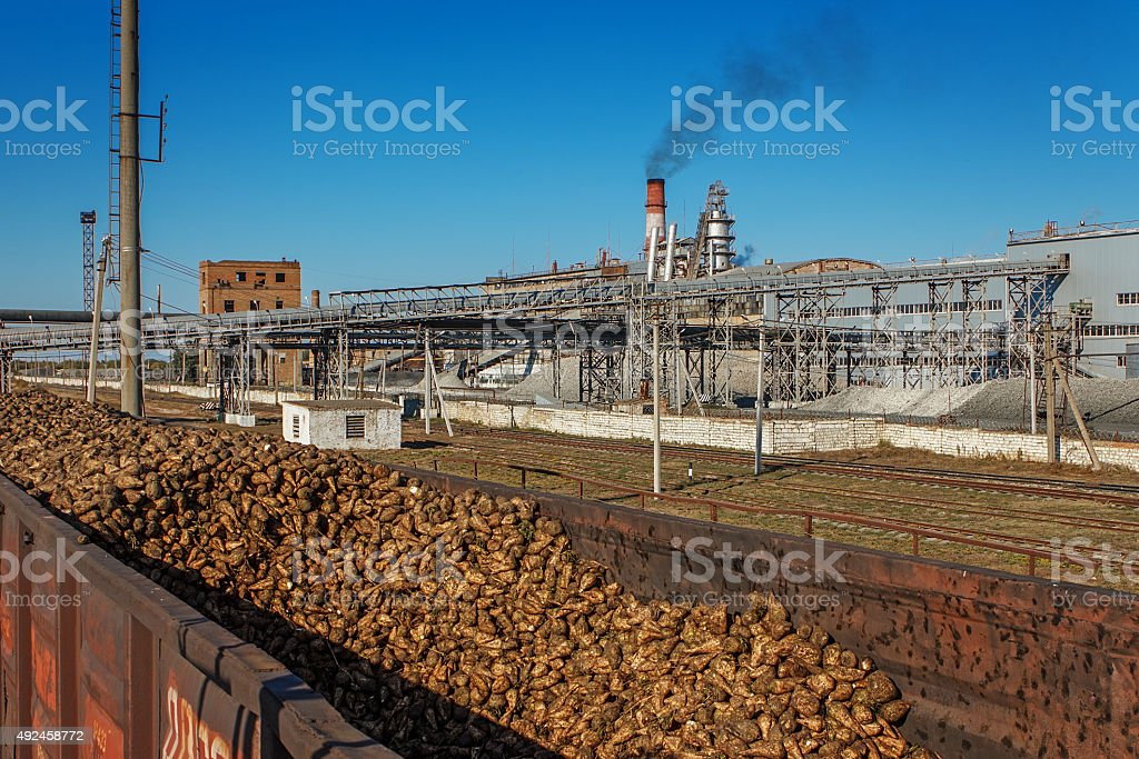 Freight wagons with sugar beets on the railroad stock photo