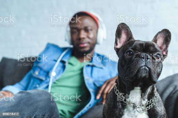French bulldog by handsome african american man in headphones picture id939018412?b=1&k=6&m=939018412&s=612x612&h=up0ely1ietmmnu4uol ybg6 zkel9li4xmrwf858m 8=