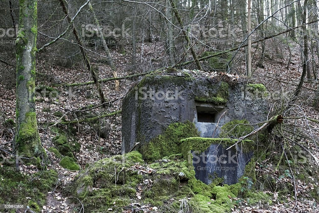 French bunker near Langensoultzbach, Vosges, France stock photo